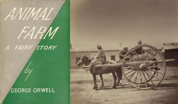 Animal_Farm_-_Horse cart
